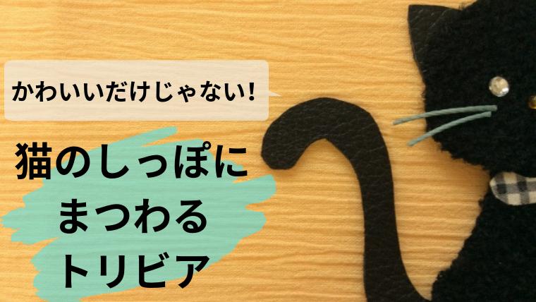 猫 しっぽ